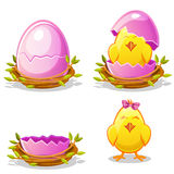 Cartoon funny chicken and pink egg in a nest royalty free illustration