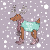 Cartoon funny Christmas deer knitted clothes and socks, Stock Photos