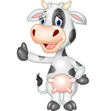 Cartoon funny cow giving thumb up isolated on transparent background Stock Image