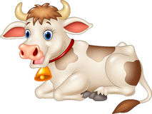 Cartoon funny cow sitting  on white background Royalty Free Stock Photography