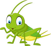 Cartoon funny cricket Stock Images