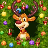 Cartoon funny deer on Christmas ornament background Stock Photo