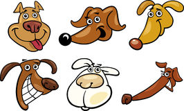 Cartoon funny dogs heads set Stock Image