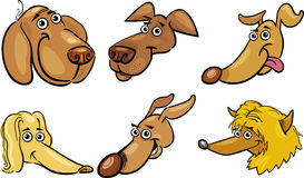 Cartoon funny dogs heads set Royalty Free Stock Photo