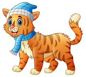 Cartoon funny dressed cat or tiger in the scarf and hat Royalty Free Stock Photography