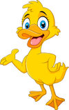 Cartoon funny duck presenting isolated on white background Royalty Free Stock Image