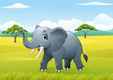Cartoon funny elephant in the jungle Royalty Free Stock Images