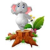 Cartoon funny elephant posing on tree stump. Illustration of Cute Cartoon funny elephant posing on tree stump Stock Photography