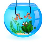 Cartoon funny fish eats a worm Royalty Free Stock Image