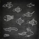Cartoon funny fish Royalty Free Stock Image