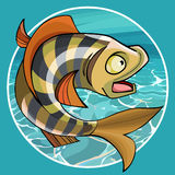 Cartoon funny fish perch in a circle on a background of water. Cartoon funny fish perch in a circle on background of water Royalty Free Stock Photography