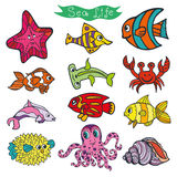 Cartoon Funny Fish, Sea Life .Colored Doodle  set. Sea life animals set.Fish,  octopus, crab and starfish. Funny cartoon doodle underwater world. Baby hand Royalty Free Stock Photo