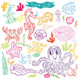 Cartoon Funny Fish, Sea Life  Doodle linear se. Sea life animals set.Fsh,  octopus, crab, seahorse with coral,seaweed and shell. Funny cartoon doodle underwater Stock Photo