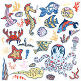 Cartoon Funny Fish, Sea Life.Pastel Doodle set. Sea life animals set  fish,  octopus and  crab, seahorse with coral,seaweed, shell. Funny cartoon doodle Stock Photography