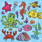 Cartoon Funny Fish, Sea Life set.Colored Doodle. Vector summer background.Sea life animals set, fish, octopus,crab,seahorse with coral,seaweed,shell.Funny Stock Photography