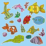 Cartoon Funny Fish, Sea Life stickers.Colored Doodle set. Sea life fish  stickers set  with coral,seaweed,shell. Funny cartoon doodle underwater world. Baby hand Stock Photos