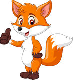 Cartoon funny fox giving thumb up isolated on white background Stock Photos