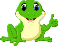 Cartoon funny frog Stock Photography
