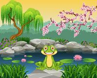 Cartoon funny frog sitting on the rock Royalty Free Stock Photo