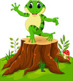 Cartoon funny frog Royalty Free Stock Image