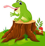 Cartoon funny frog Royalty Free Stock Photography