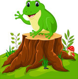 Cartoon funny frog Stock Photo