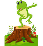 Cartoon funny frog Stock Photos