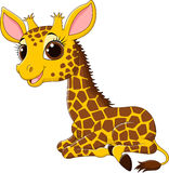 Cartoon funny giraffe sitting  on white background Royalty Free Stock Image