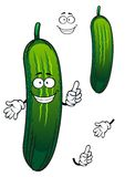 Cartoon funny green cucumber vegetable Royalty Free Stock Photo