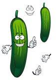 Cartoon funny green cucumber vegetable Royalty Free Stock Photo