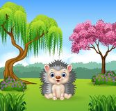 Cartoon funny hedgehog sitting in the jungle Royalty Free Stock Photo