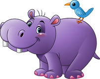 Cartoon funny hippo with bird stock illustration