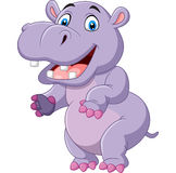 Cartoon funny hippo Royalty Free Stock Photography