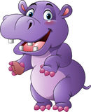 Cartoon funny hippo Stock Photos