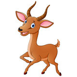 Cartoon funny impala isolated on white background. Illustration of Cartoon funny impala isolated on white background Stock Image