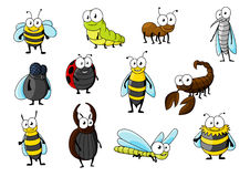 Cartoon funny insect animals characters Stock Images