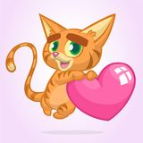 Cartoon funny kitty holding a heart love. Vector illustration for St Valentines Day. Isolated. Cartoon funny kitty holding a heart love. Vector illustration for Stock Images