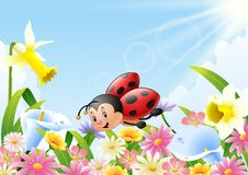 Cartoon funny ladybug flying over flower field. Illustration of Cartoon funny ladybug flying over flower field Royalty Free Stock Photography