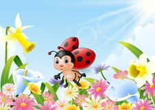Cartoon funny ladybug flying over flower field. Illustration of Cartoon funny ladybug flying over flower field Stock Photo