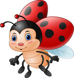 Cartoon funny ladybug stock illustration