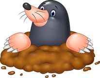Cartoon funny mole Royalty Free Stock Photo