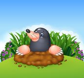 Cartoon funny mole in the jungle Royalty Free Stock Photo
