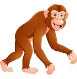 Cartoon funny monkey. Illustration of Cartoon funny monkey Royalty Free Stock Photos