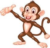 Cartoon funny monkey presenting isolated on white background Stock Photos
