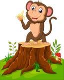 Cartoon funny monkey Stock Photography