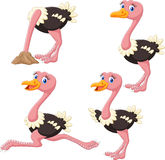 Cartoon funny ostrich collection set Stock Image