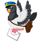 Cartoon funny pigeon Stock Photography