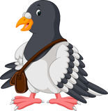 Cartoon funny pigeon bird Royalty Free Stock Photos