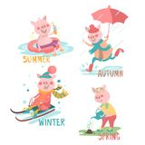 Cartoon, funny pigs with seasonal activity set - summer, autumn, winter, spring. Swimming pig in pool float, piggy jumping in the puddle with umbrella, piglet Stock Photo