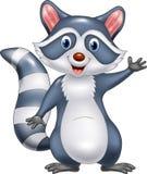 Cartoon funny raccoon cartoon waving hand Royalty Free Stock Photos